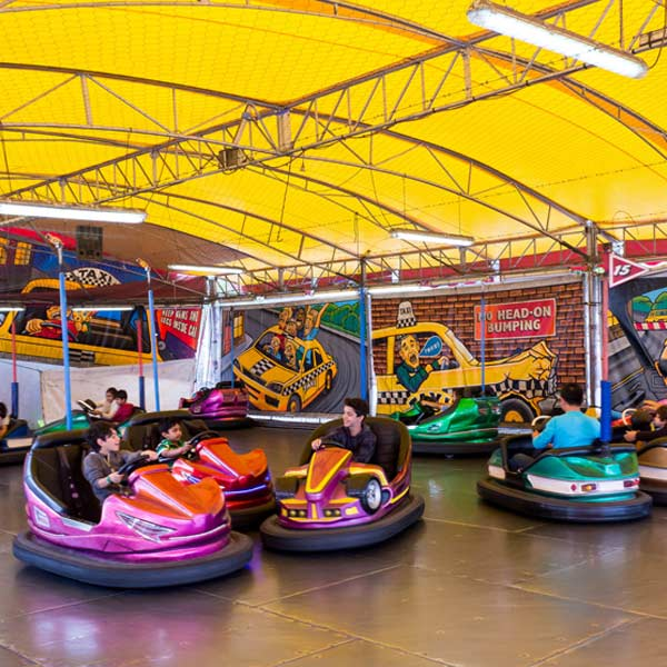 Should You Let Your Kids Ride Amusement Park Bumper Cars?