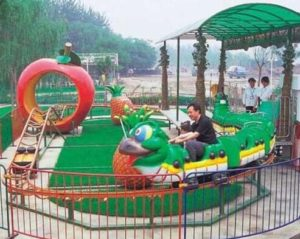 How To Find A Small Roller Coaster For Your Amusement Park?