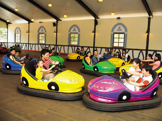Is It a Smart Idea to Buy Bumper Cars?