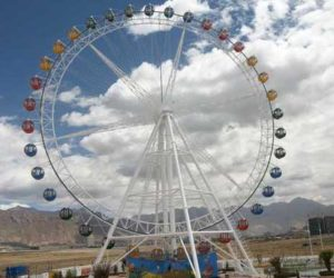 Everyones Favortite Carnival Amusement Rides