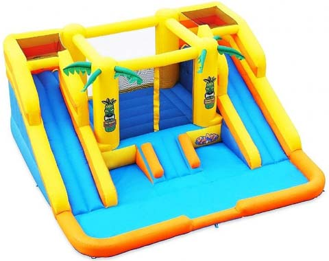 BIS-025 Rainforest Rapids Inflatable Bouncy Slides for Sale