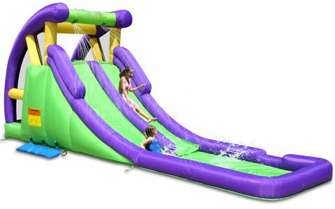 BIS-027 Outdoor Inflatable Twin Water Slides for Sale