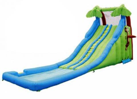BIS-033 Tropical Wave Inflatable Backyard Slides for Sale