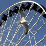 Quality Ferris Wheel Seats – A Key Part Of The Ferris Wheel Ride