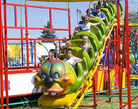 Tips To Keep In Mind When Choosing Small Roller Coaster Rides