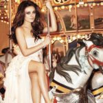 The General History Of The Carousel And Beyond
